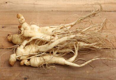 8 incredibili benefici per la salute della radice di ginseng
