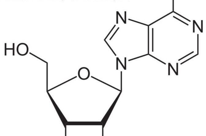 I 5 migliori benefici per la salute dell'adenosina